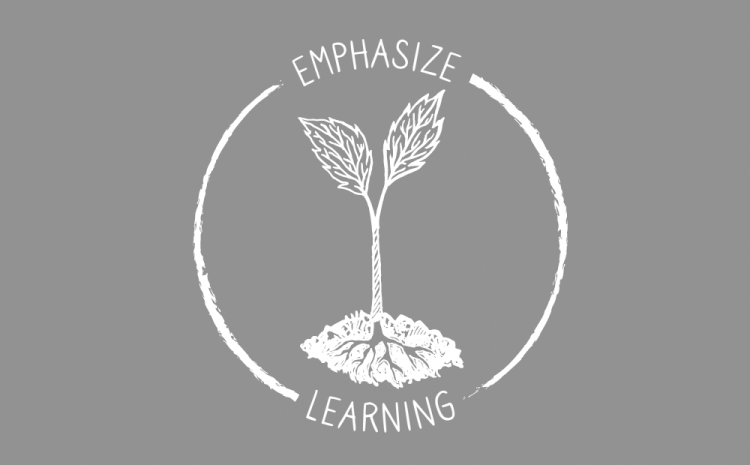 Emphasize Learning