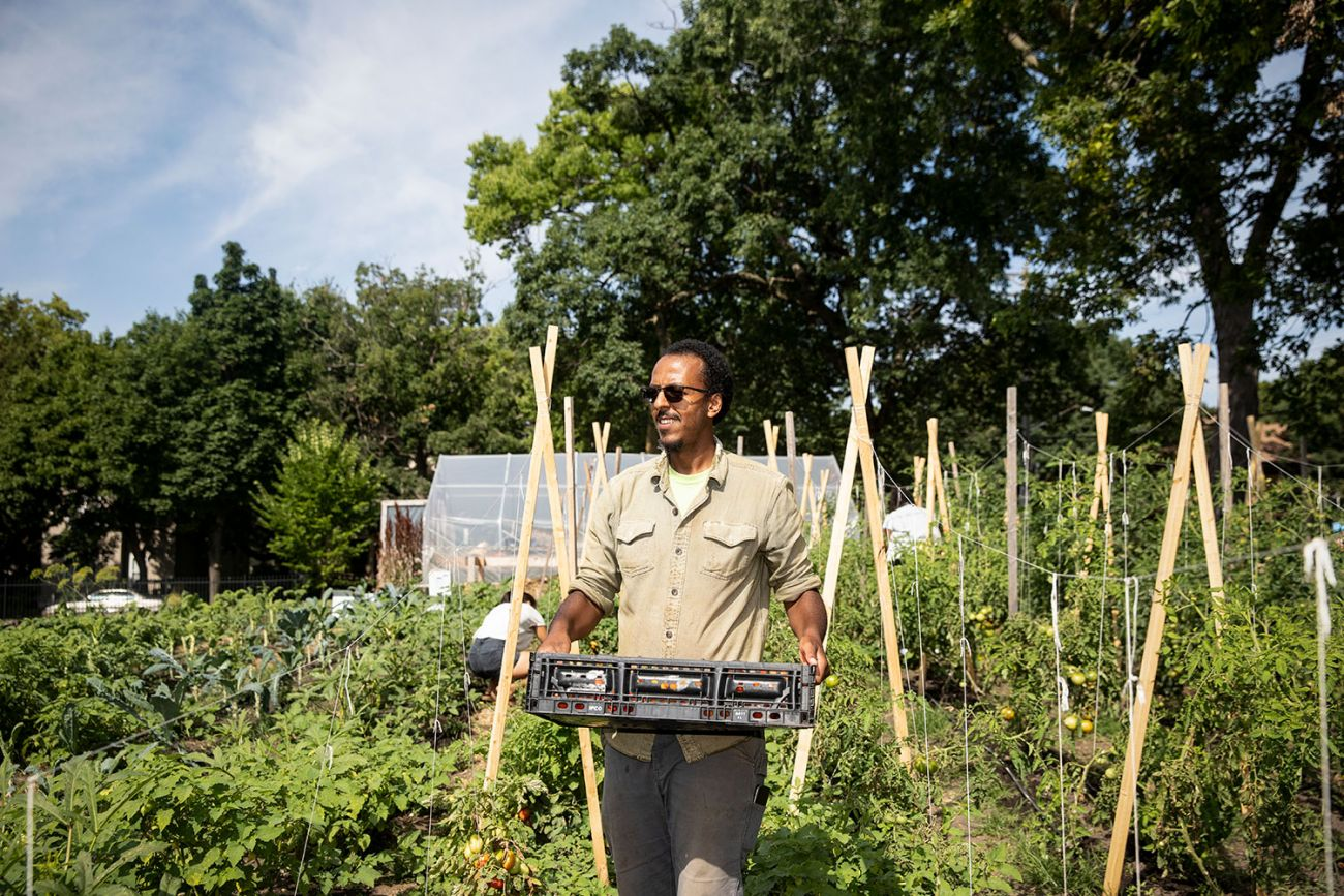 Ibrahim Mohammed, Appetite for Change urban agriculture program manager, at one of their seven urban farms
